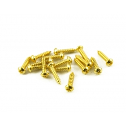TAILPIECE MOUNT/BASS TUNING MACHINE SCREW GOLD (16)