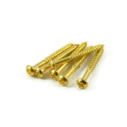 STRAT® TREMOLO GOLD ( 6 )