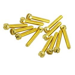 HUMBUCKER POLE PIECE GOLD ( 6 )