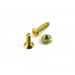 SCREW KIT FOR LP¨ BRACKET GOLD