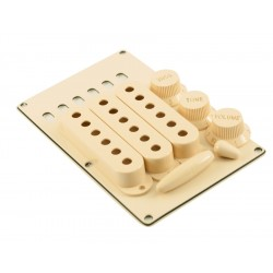 WD® ACCESSORY KIT FOR STRAT® - CREAM