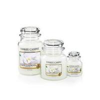 Yankee Candle Medium Lys White Gardenia